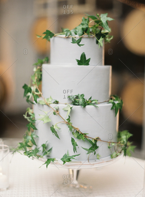 Three-tiered wedding cake with a leafy vine