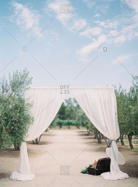 Curtains over path in a vineyard
