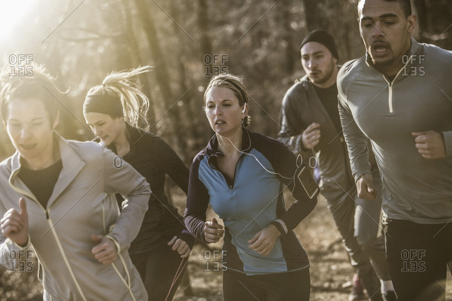 Runners jogging on dirt path in forest