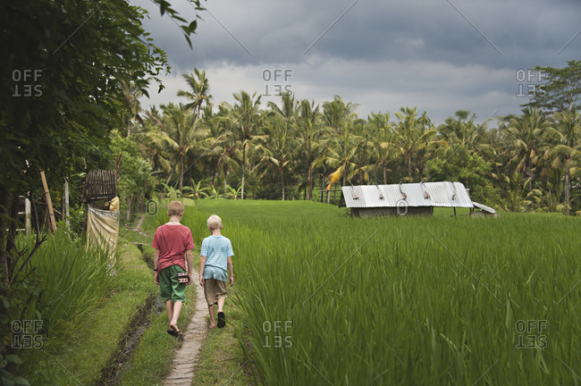 Caucasian boys walking on grass road near farm fields