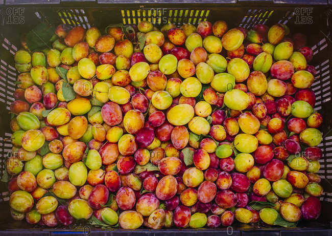 Close up of crate of fresh fruit