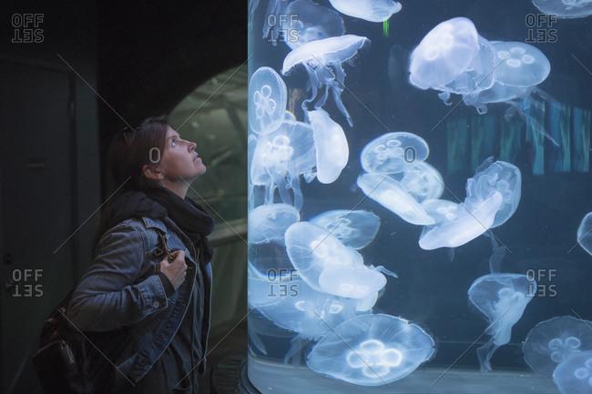 Caucasian woman admiring jellyfish in aquarium