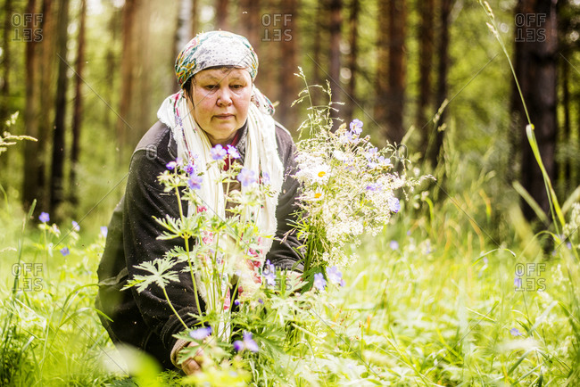 Caucasian woman gathering wildflowers in forest