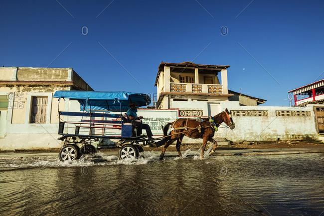 Horse pulling cart in puddle, Baracoa, Guantanamo, Cuba
