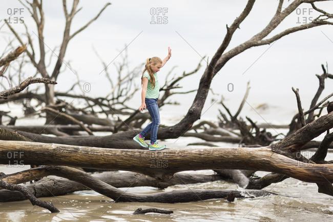 Caucasian girl walking on driftwood tree