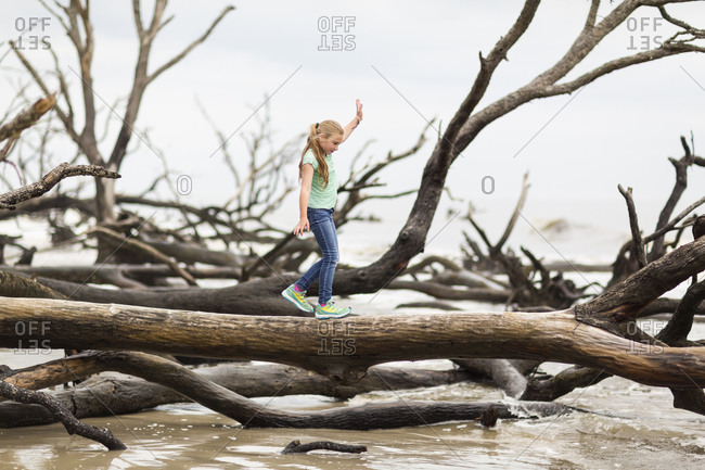 Caucasian girl walking on driftwood tree