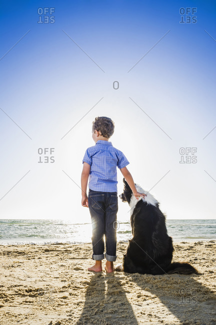Caucasian boy petting dog on beach