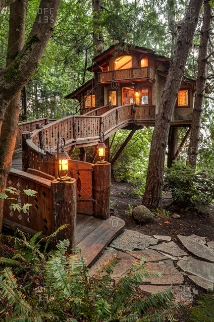 Wooden walkway to illuminated tree house