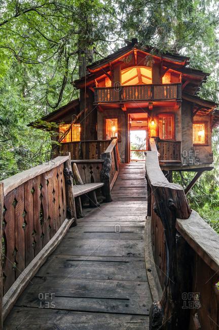 Wooden walkway to illuminated tree house