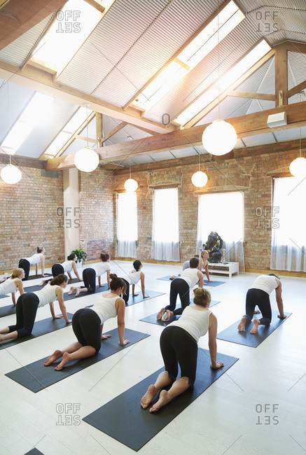 Instructor leading students in yoga class
