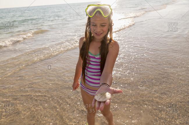 Caucasian girl holding sand dollar on beach