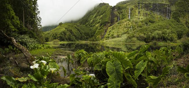 Still river in lush remote landscape
