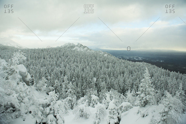 Aerial view of snowy forest in remote landscape