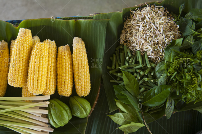Close up of fresh corn, greens and herbs on counter
