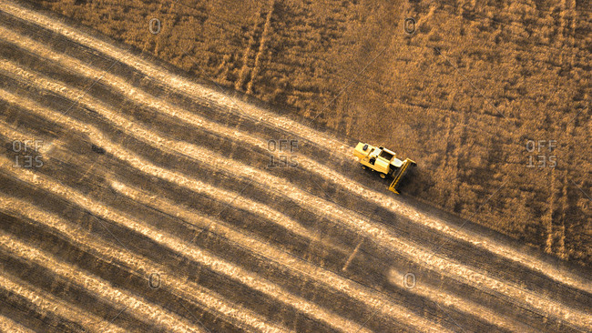 Aerial view of combine harvester in farm field