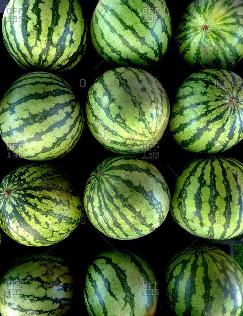 Watermelons arranged in grid