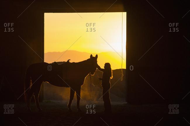 Caucasian woman grooming horse in barn