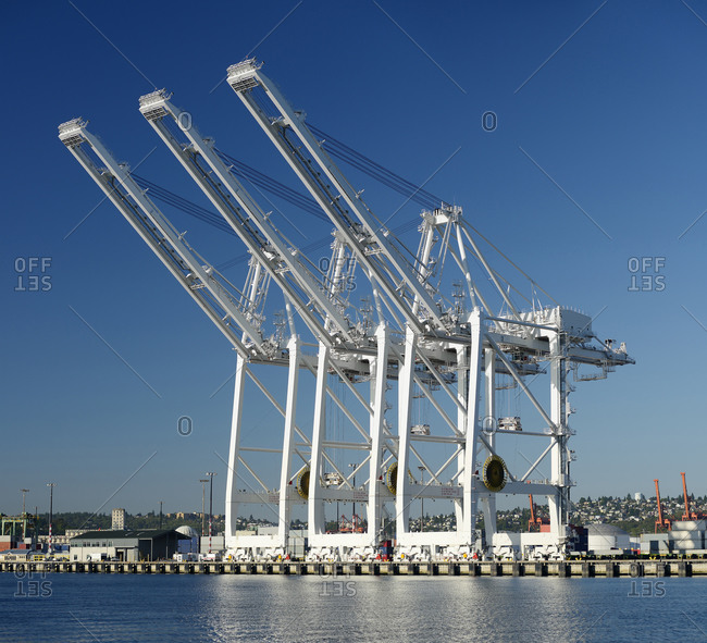 Shipping cranes over industrial shipyard