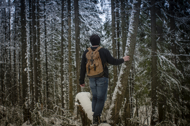 Caucasian hiker standing in snowy forest