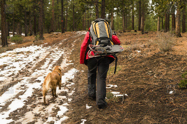 Dog and man out for hike