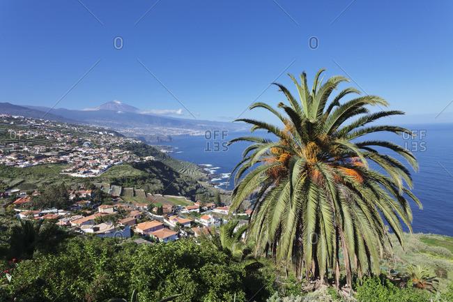 View over Orotava Valley to the north coast and Puerto de la Cruz und den Teide, Tenerife, Canary Islands, Spain