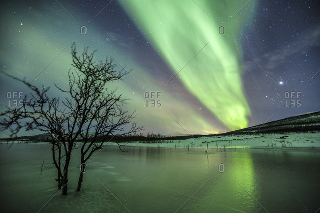 Aurora Borealis on the frozen lagoon of Jaegervatnet StortindLyngen Alps Tromso Lapland Norway Europe