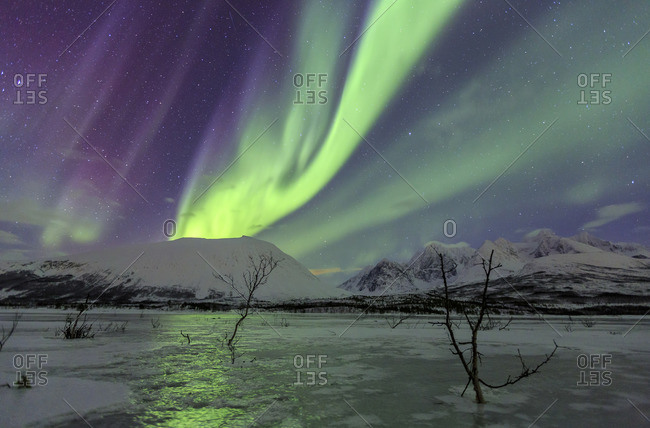 Aurora Borealis on the frozen lagoon of Jaegervatnet StortindLyngen Alps Tromso Lapland Norway Europe
