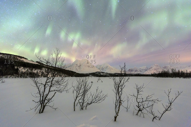 The Northern Lights illuminates the snowy landscape in Svensby Lyngen Alps Tromso Lapland Norway Europe