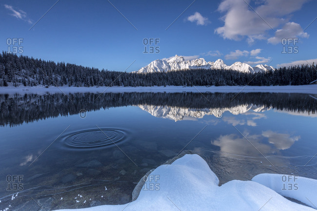 Woods and snowy peaks are reflected in the clear water of Lake Pali Malenco Valley Valtellina Lombardy Italy Europe