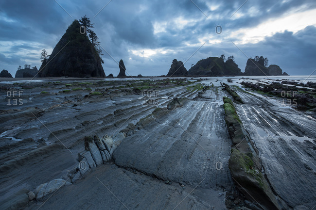 Coastal landscape, Olympic National Park, Pacific, Washington, West coast, USA