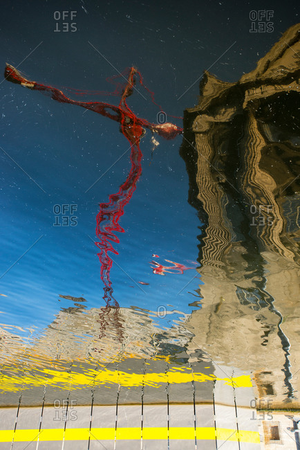 Crane reflected in the Spree in front of the Pergamon Museum on Museum Island in Berlin Mitte