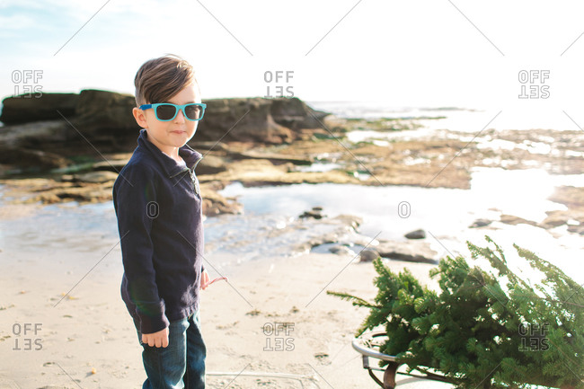 Boy with Christmas tree on a sled by the ocean