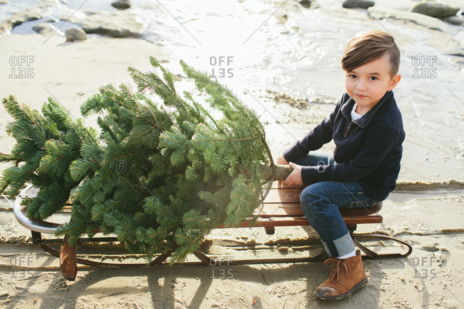 Boy sitting on a sled with Christmas tree on the beach