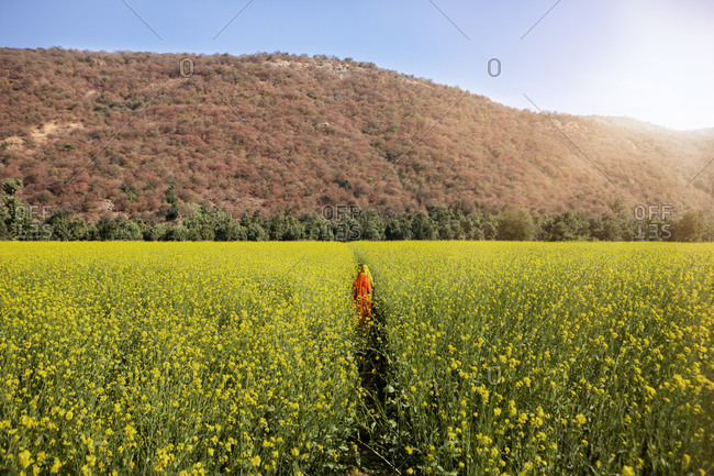 Mid distance of woman amidst rapeseed field by mountain