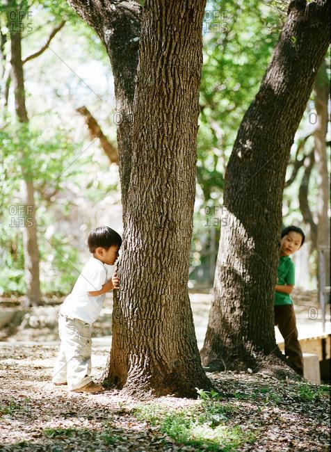 Kids playing hide and seek