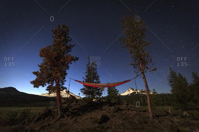 Night time moonlit hammock set up