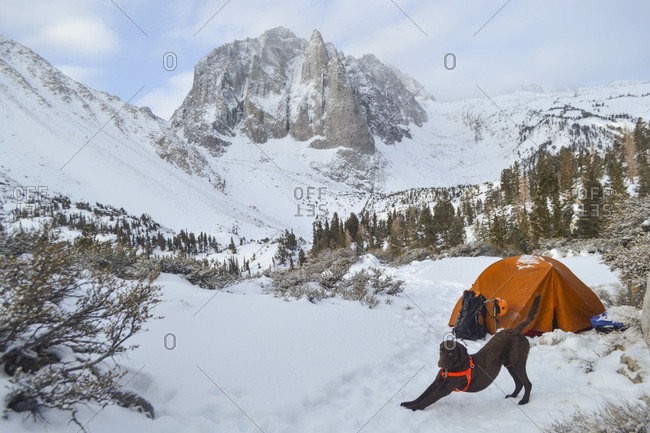 Camp life below Temple Crag in John Muir Wilderness