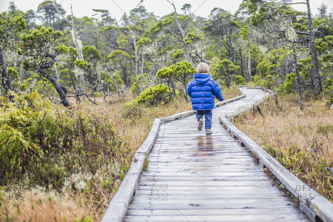 A young boy walks the Pine Bog Trail in Pacific Rim National Park on Vancouver Island