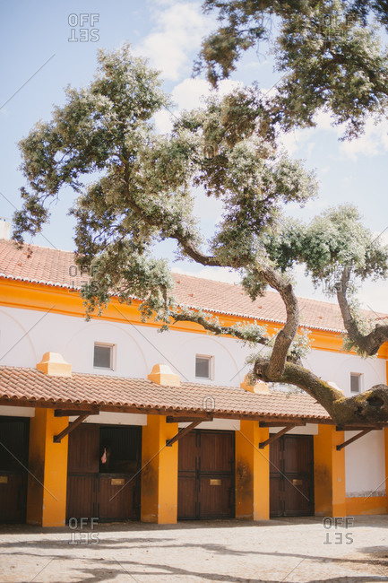 Terra cotta roof tiles on stable building in Alentejo, Portugal