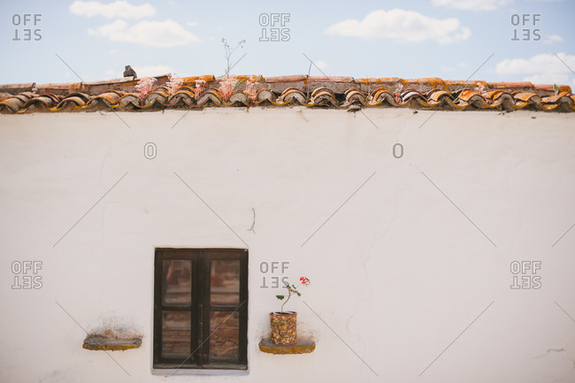 Rustic wooden shelves set into stucco wall on opposite sides of window of Portuguese home