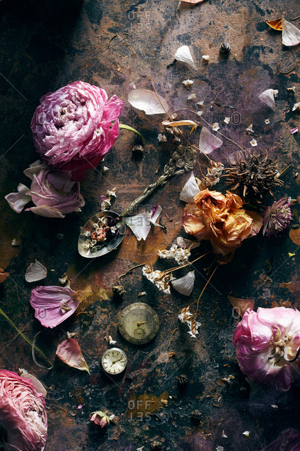 Old pink flowers with petals and antiques