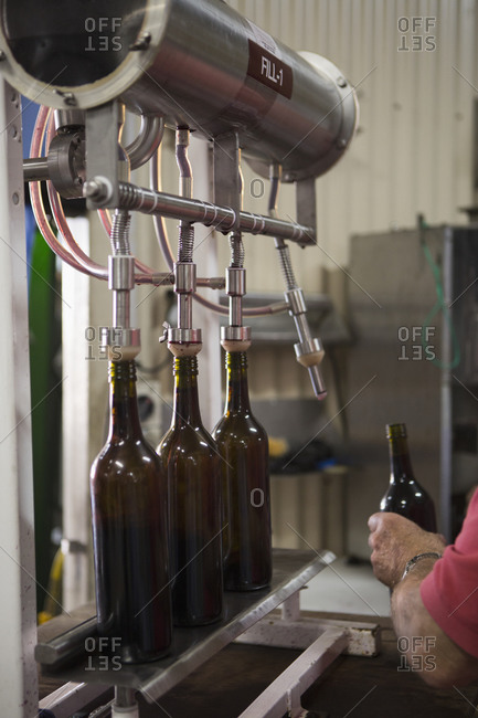 Man holding bottle in a factory