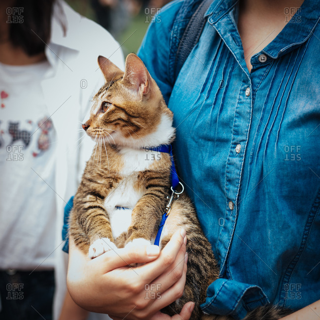 Young woman holding cat, China
