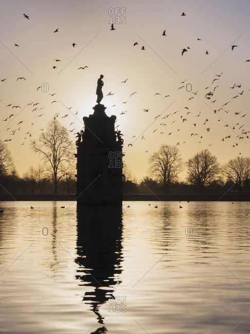Flock of birds over Diana Fountain in Bushy Park at sunset; London, England