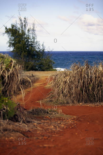 Views from walking along the Kealia walk path; Kapaa, Kauai, Hawaii, United States of America