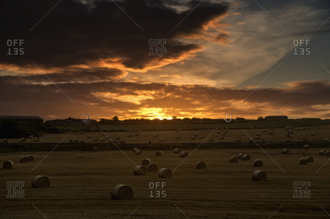 Dramatic sunset with dark clouds over a field with hay bales; Whitburn, Tyne and Wear, England