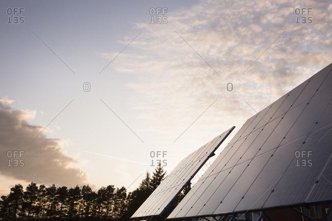Solar panels in field; Bloomfield, Ontario, Canada