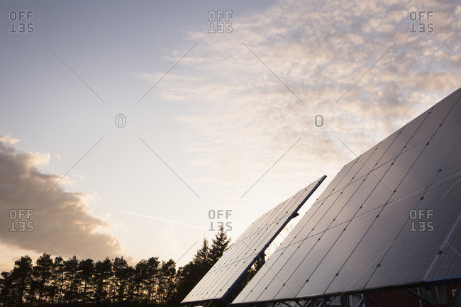 Solar panels in field; Bloomfield, Ontario, Canada