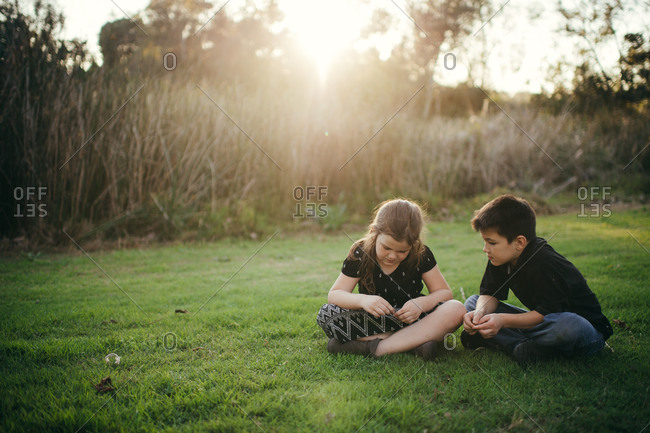 Two children sitting in the grass
