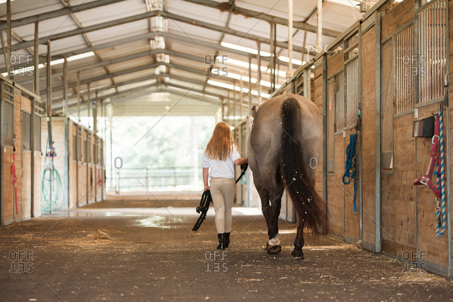 Girl leading her horse through an aisle at stables